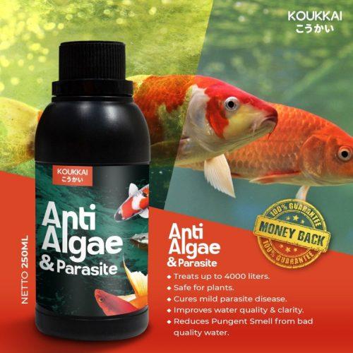 Jual Produk Koukkai Anti Alga Aquarium & Parasit Aman 100%